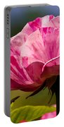 Stripes On  Roses Portable Battery Charger