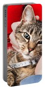 Stroking A Cat Portable Battery Charger by Tom Gowanlock