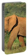 Strolling Elephant Portable Battery Charger