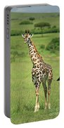 Strolling Giraffe Portable Battery Charger
