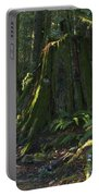 Stump And Fern Portable Battery Charger