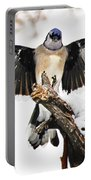 Stumped  Bluejay Portable Battery Charger