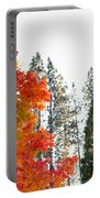Judge Thieler Sugar Maple, Quincy California Portable Battery Charger