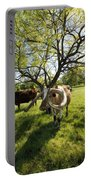 Stunning Texas Longhorns Portable Battery Charger