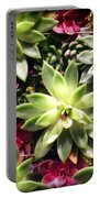 Succulent Beauties Portable Battery Charger