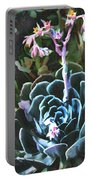 Succulent Flower Caught In A Moonbeam Portable Battery Charger