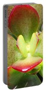 Succulent Plant Upclose Portable Battery Charger
