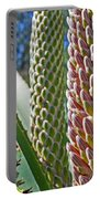 Succulents IIi Portable Battery Charger