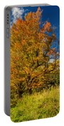 Sugar Maple 3 Portable Battery Charger