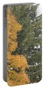 Sugar Maple And Evergreen Portable Battery Charger