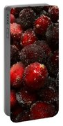 Sugared Cranberries Portable Battery Charger