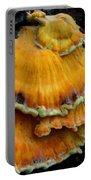 Sulphur Shelf  Portable Battery Charger