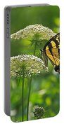 Sultry Summer Day Portable Battery Charger