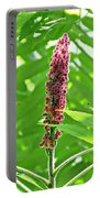 Sumac Portable Battery Charger
