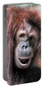 Sumatran Orangutan Portable Battery Charger