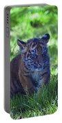 Sumatran Tiger Cub Portable Battery Charger