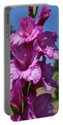 Summer Beauties Portable Battery Charger