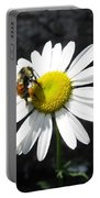 Summer Bee Portable Battery Charger