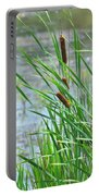 Summer Cattails In The Breeze Portable Battery Charger