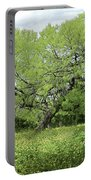 Summer Mesquite Tree Portable Battery Charger