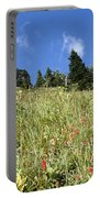Summer Mountain Landscape Portable Battery Charger