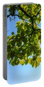 Summer Sky Portable Battery Charger