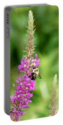 Summer Time And The Feeding Is Easy Portable Battery Charger