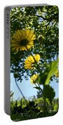 Summer Viewpoint Portable Battery Charger