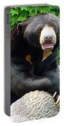 Sun Bear - 09515-1 Portable Battery Charger