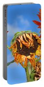 Sun Drenched In Autumn By Diana Sainz Portable Battery Charger