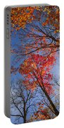Sun In Fall Forest Canopy  Portable Battery Charger