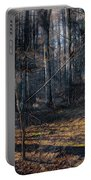 Sun In The Forest Portable Battery Charger
