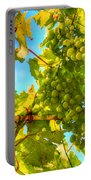 Sun Kissed Green Grapes Portable Battery Charger by Eti Reid