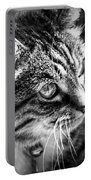 Sun Kissed Kitty Portable Battery Charger