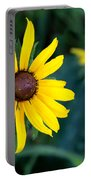 Sun Worshiper  Portable Battery Charger