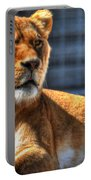 Sunbathing Lioness  Portable Battery Charger