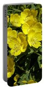 Sundrops Portable Battery Charger