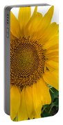 Fibonacci In Full Bloom Portable Battery Charger