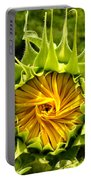 Sunflower Whirl Portable Battery Charger