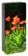 Sunkissed Tulip Garden Portable Battery Charger