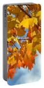 Sunlight And Shadow - Autumn Leaves Two Portable Battery Charger