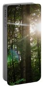 Sunlight Forest Portable Battery Charger