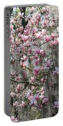 Sunlight On Saucer Magnolias Portable Battery Charger