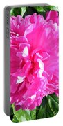 Sunlight On The Peony Portable Battery Charger