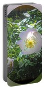 Sunlight On The Wild Pink Rose Portable Battery Charger