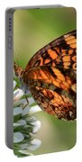 Sunlight Through Butterfly Wings Portable Battery Charger