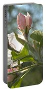 Sunlit Apple Blossoms Portable Battery Charger