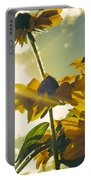 Sunlit Daisies Portable Battery Charger