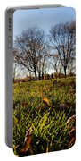 Sunlit Fall Lawn Portable Battery Charger