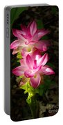 Sunlit Orchids Portable Battery Charger